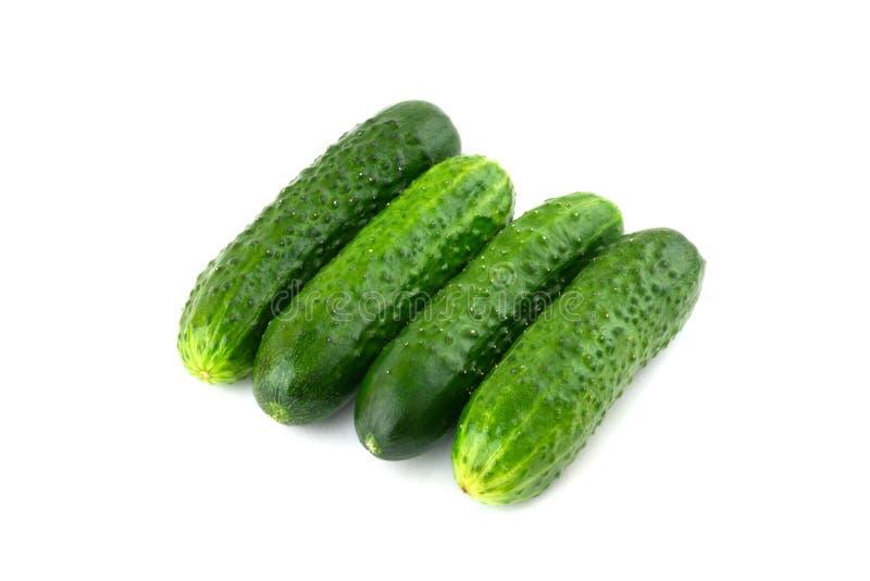 Verse groene komkommers op een witte achtergrond stock afbeelding