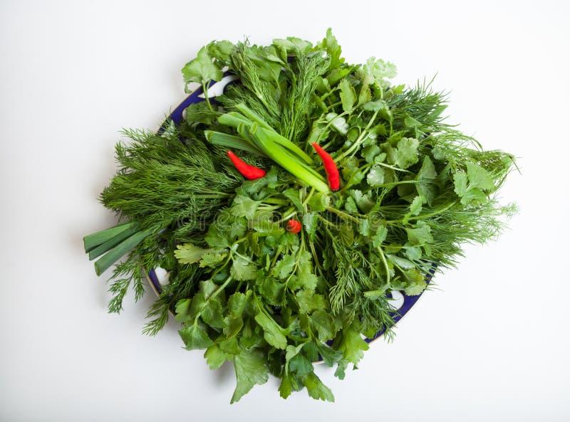 Verse groene kruiden stock afbeeldingen
