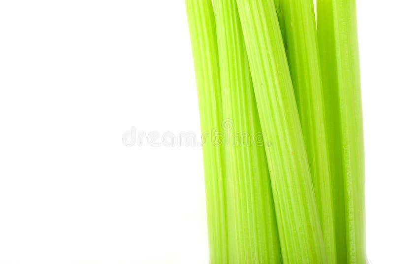 Verse groene selderie die op wit wordt geïsoleerdw royalty-vrije stock afbeeldingen