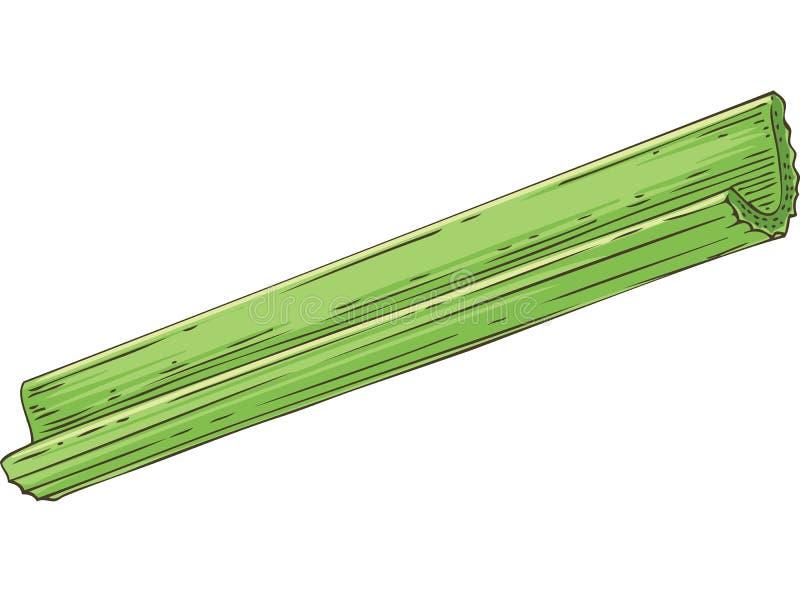 Verse Groene Selderiestok vector illustratie