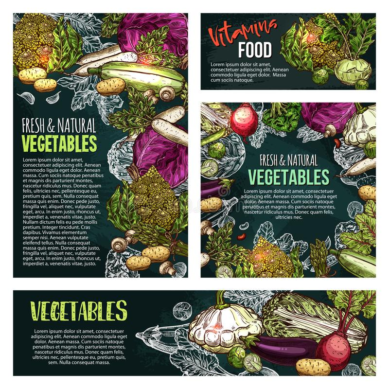 Verse groente en paddestoelbordbanner stock illustratie