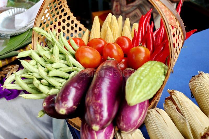 Verse groenten die, enkel in de tuin plukken royalty-vrije stock afbeelding