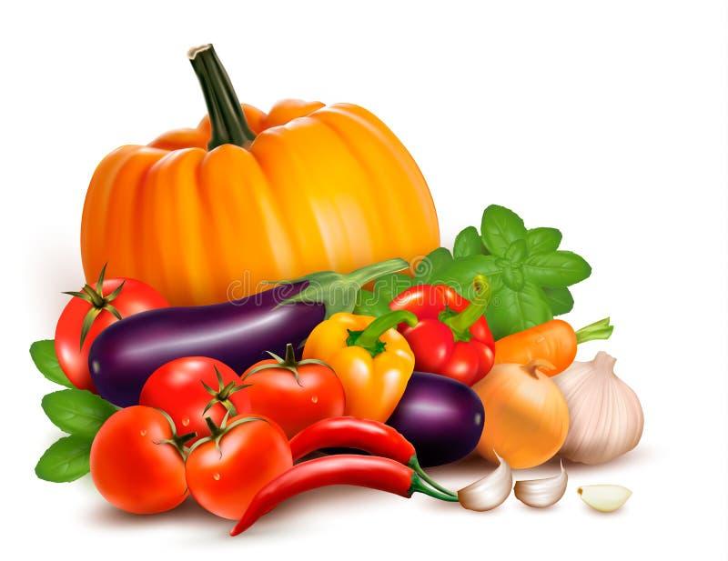 Verse groenten. Gezond Voedsel. royalty-vrije illustratie