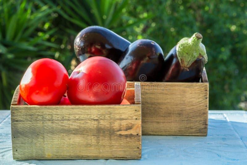 Verse groenten, tomaten en aubergines, aubergine stock afbeelding