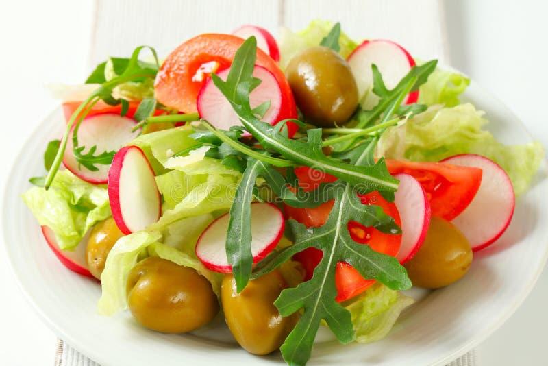 Verse groentesalade stock fotografie