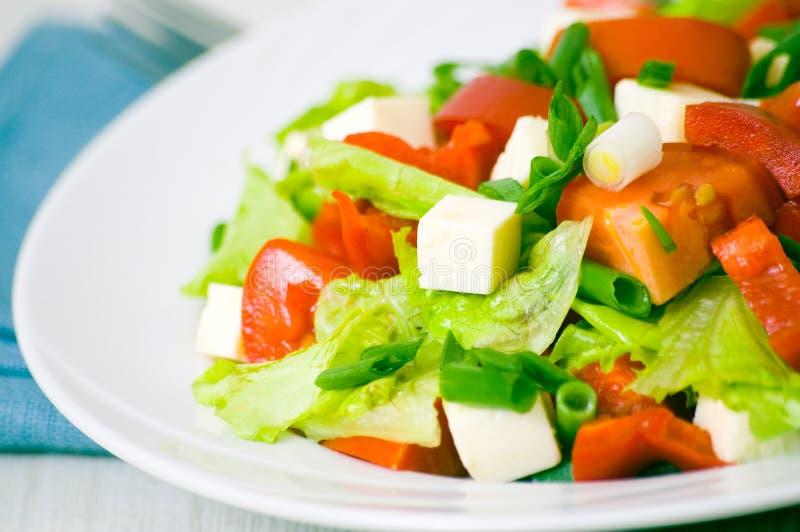 Verse groentesalade met kaas royalty-vrije stock afbeeldingen