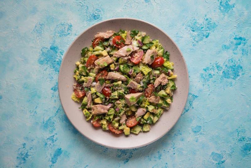Verse groentesalade met tonijnplakken Hoogste mening royalty-vrije stock foto