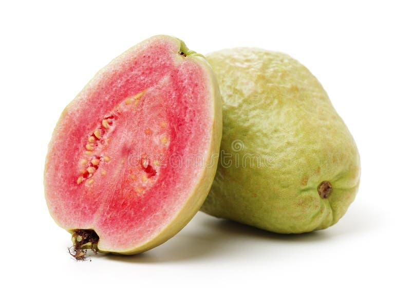 Verse guave stock fotografie