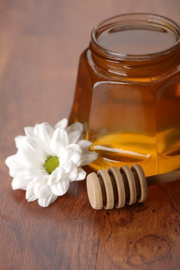 Verse honing royalty-vrije stock afbeelding