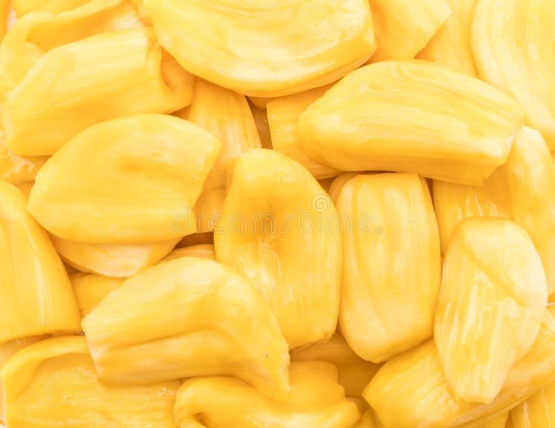Verse jackfruit stock foto