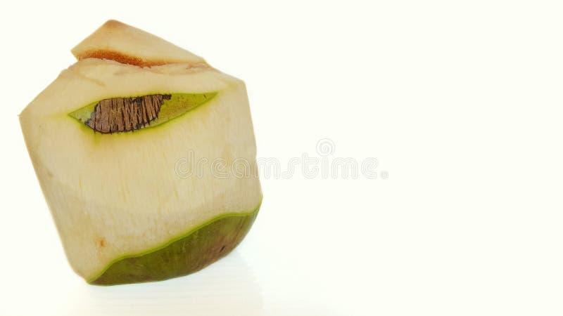 Verse jonge die kokosnoot op witte achtergrond wordt ge?soleerd royalty-vrije stock afbeelding