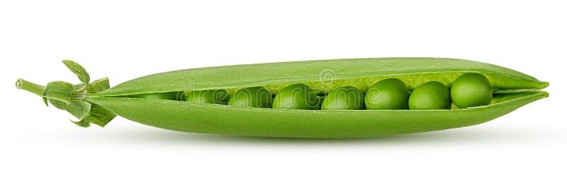 Verse jonge groene erwten stock foto