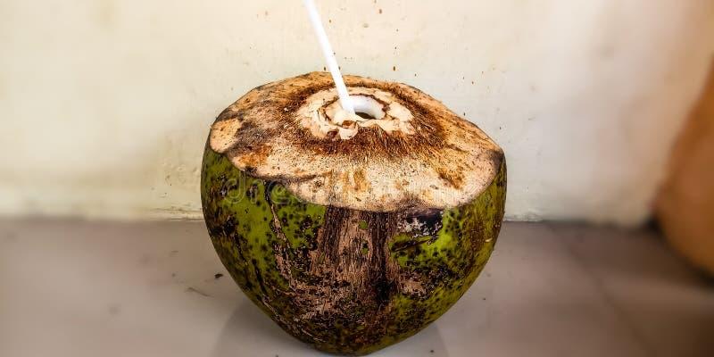 Verse jonge kokosnoot klaar te drinken stock afbeelding
