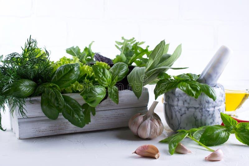 Verse keukenkruiden en kruiden, olie met een wit ceramisch mortier Arugulagarlic de saladesalie van de basilicumdille stock foto's