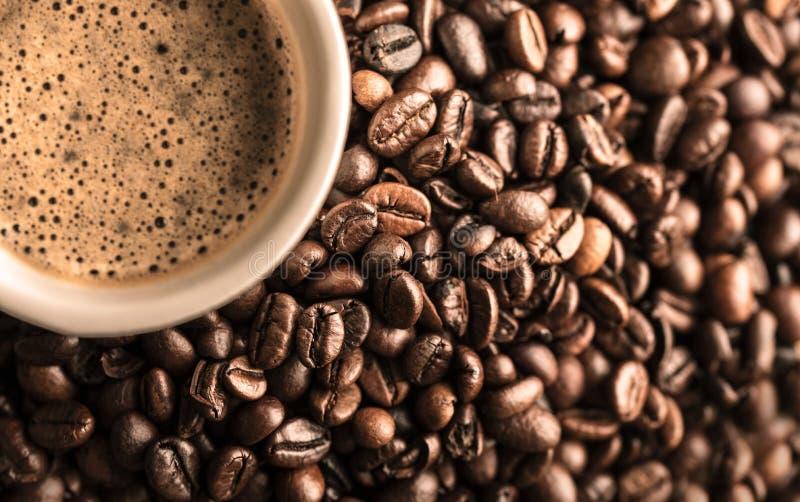 Verse koffie en koffiebonen stock fotografie