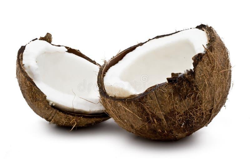Verse kokosnoot stock fotografie