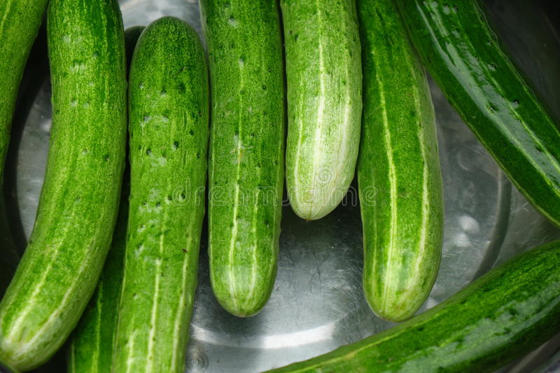 Verse komkommer stock afbeeldingen