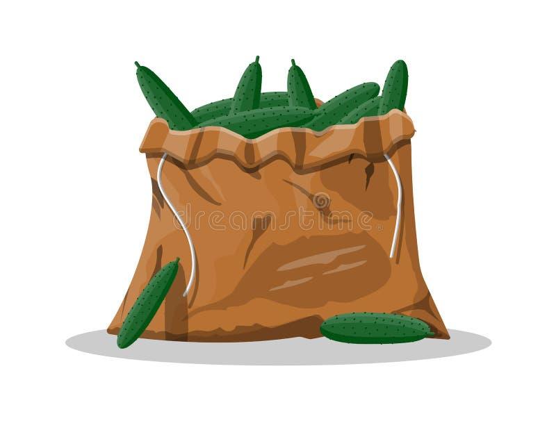 Verse komkommer in canvaszak stock illustratie