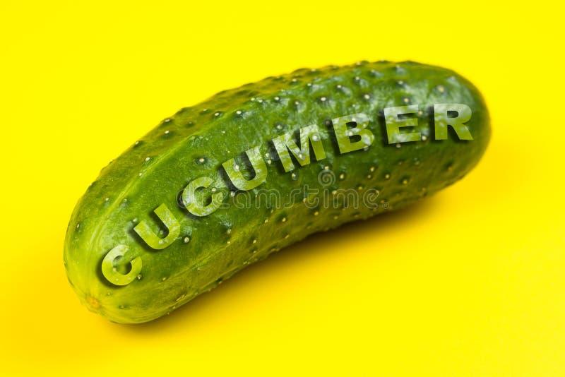 Verse komkommer die op gele achtergrond wordt ge?soleerd Word KOMKOMMER royalty-vrije illustratie