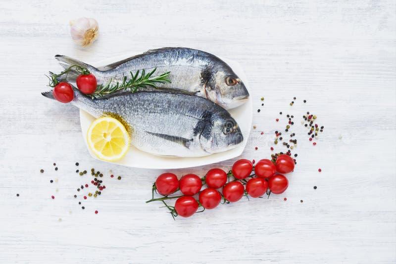 Verse Koninklijke Dorada op witte Achtergrond Gezond voedselconcept Hoogste mening, exemplaarruimte royalty-vrije stock afbeeldingen