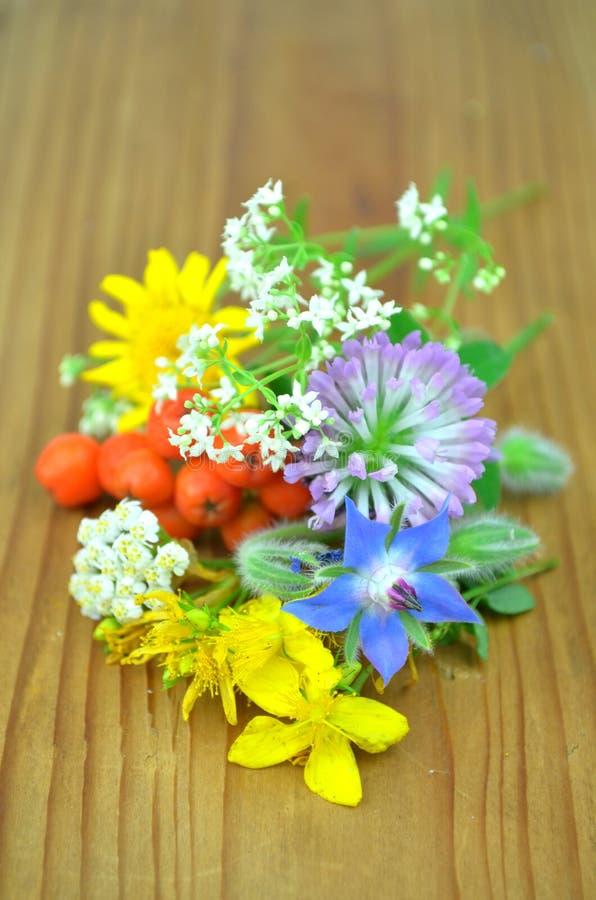 Verse kruiden en bloemen royalty-vrije stock afbeelding