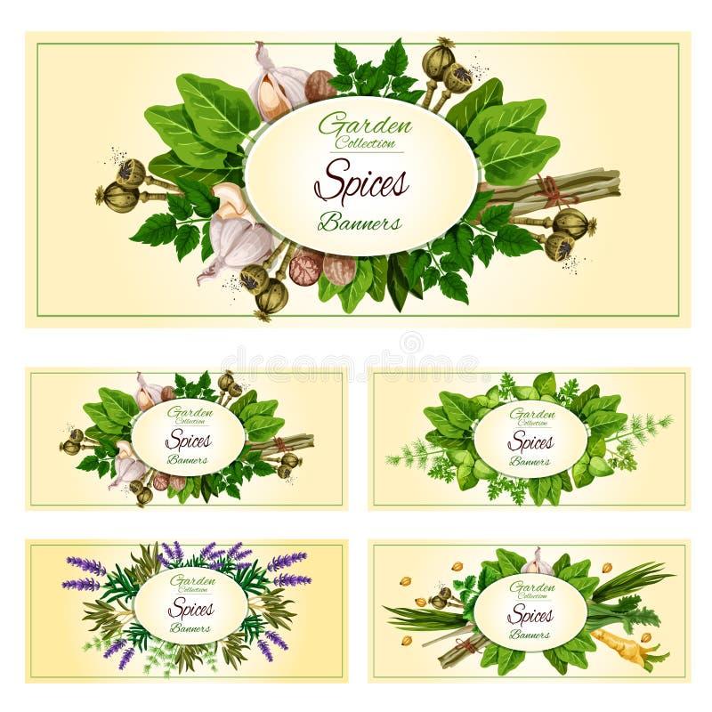 Verse kruiden, kruiden en specerijenbannerreeks stock illustratie