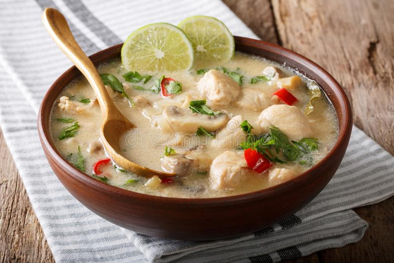 Verse kruidige Thaise soeptom khagai van kip met groenten w royalty-vrije stock afbeeldingen