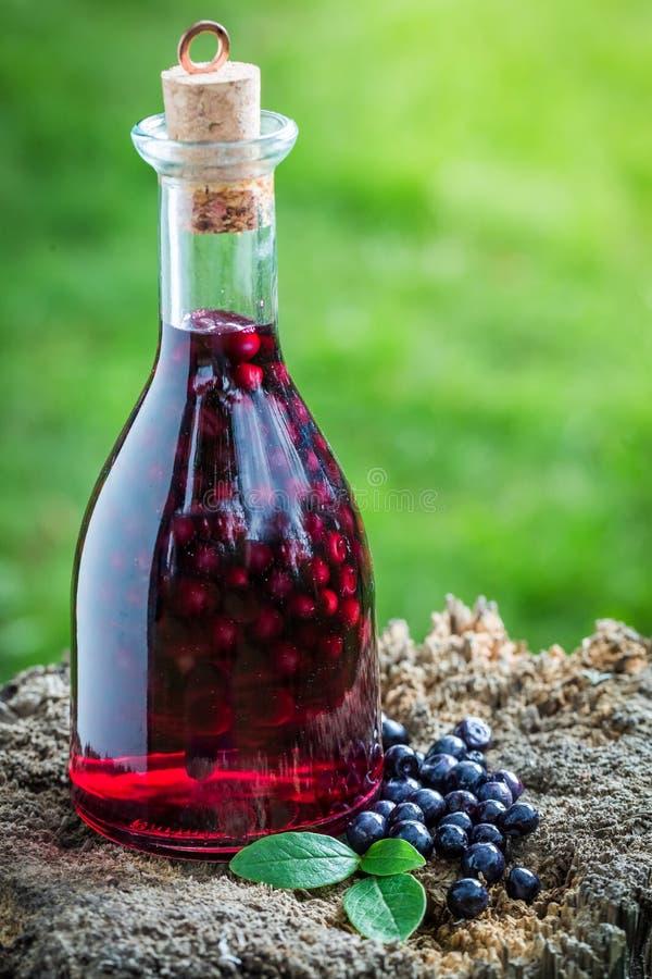 Verse likeur in een fles met bosbessen en alcohol royalty-vrije stock afbeeldingen