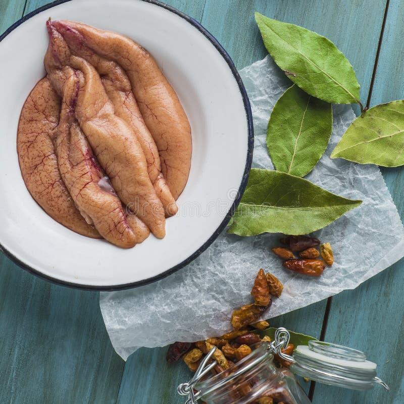 Verse makreelkuiten stock foto's