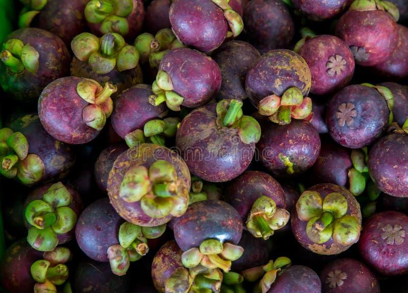 Verse mangostan voor verkoop bij een openluchtmarkt Mangostanstapels in ??n kader De mangostan is een Indonesisch fruit dat purpe stock foto's
