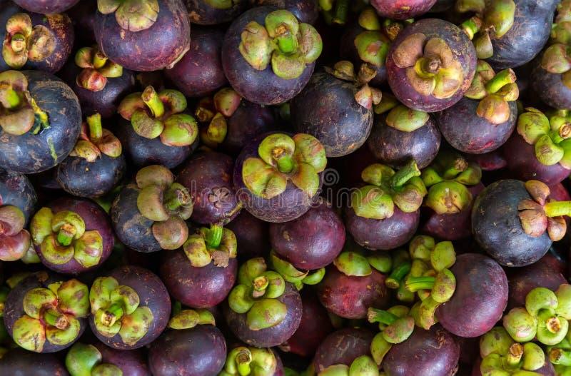 Verse mangostan voor verkoop bij een openluchtmarkt Mangostanstapels in ??n kader De mangostan is een Indonesisch fruit dat purpe royalty-vrije stock afbeeldingen