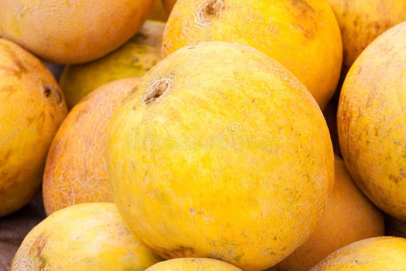 Verse meloenen voor verkoop royalty-vrije stock fotografie