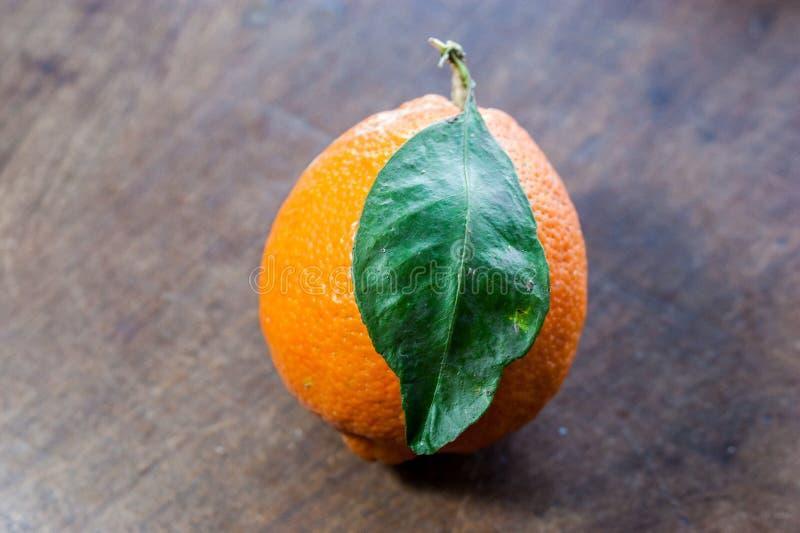Verse Meyer-citroen van Paraguay stock afbeeldingen