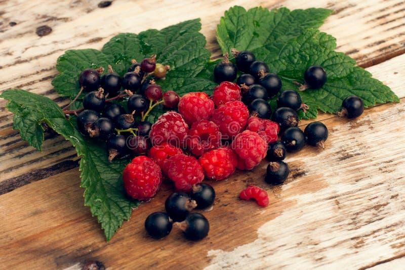 Verse mixberries royalty-vrije stock afbeelding