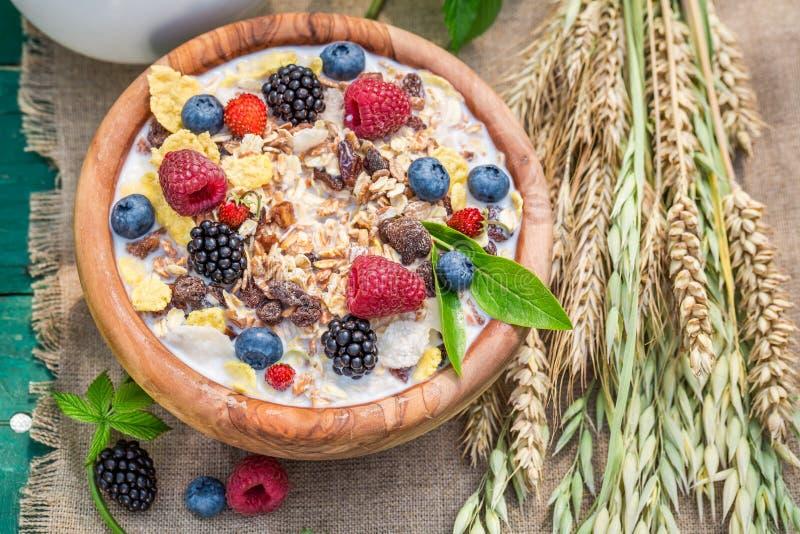 Verse muesli met bessen en melk in tuin stock afbeeldingen