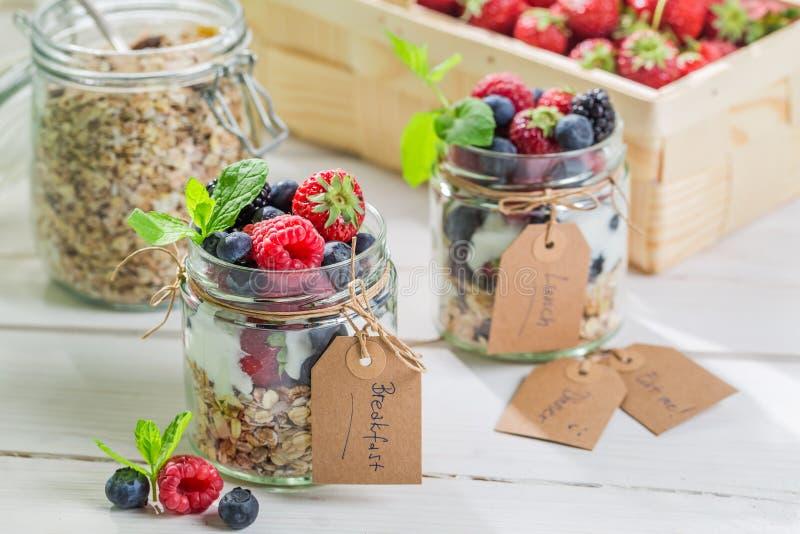 Verse muesli met bessen en yoghurt royalty-vrije stock afbeelding