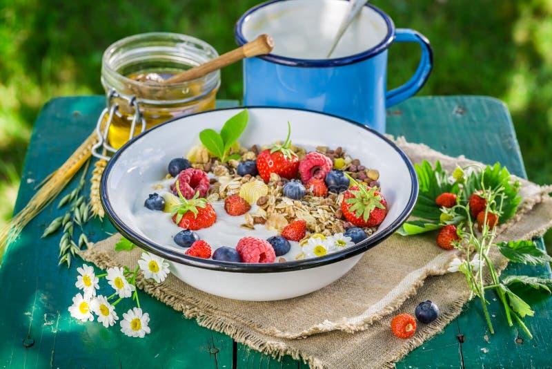 Verse muesli met bessen en yoghurt stock foto's