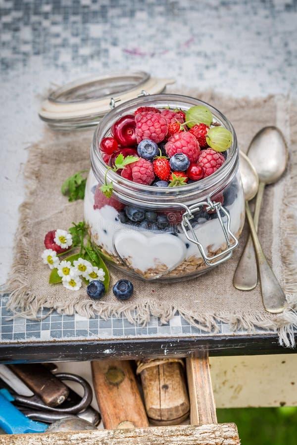 Verse muesli met bloemen en vruchten royalty-vrije stock afbeeldingen