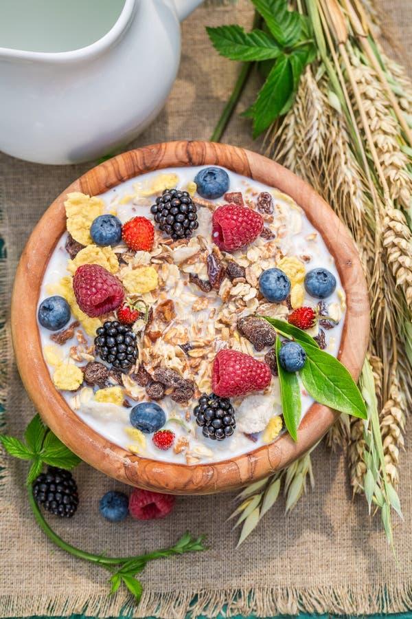Verse muesli met melk en bessen in tuin stock foto's