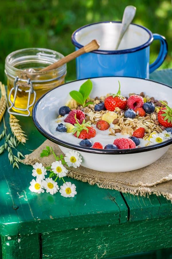 Verse muesli met yoghurt en bessen royalty-vrije stock foto's
