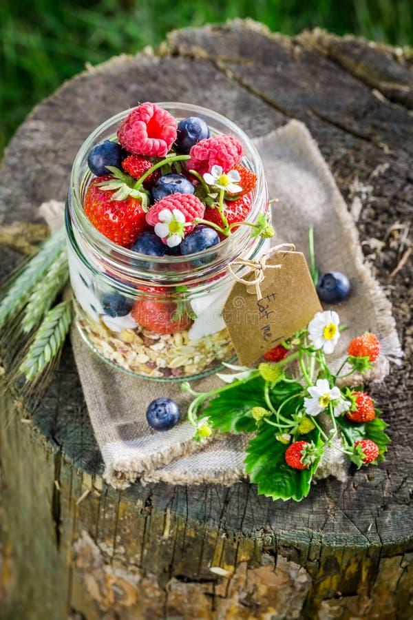 Verse muesli met yoghurt en bessen in tuin stock foto