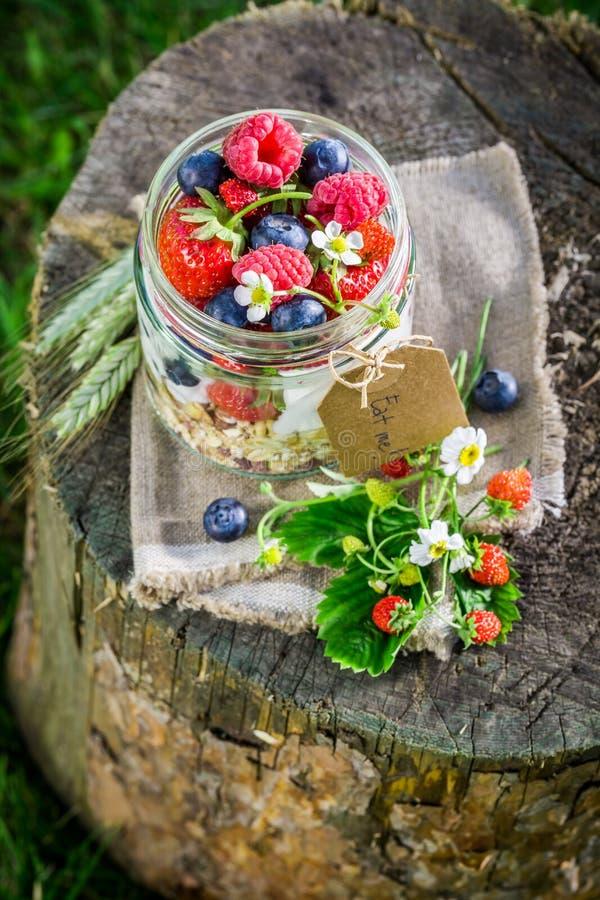 Verse muesli met yoghurt en bessen in zonnige dag royalty-vrije stock foto's