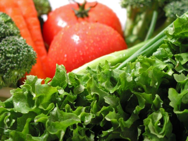 Verse natte groenten stock afbeelding