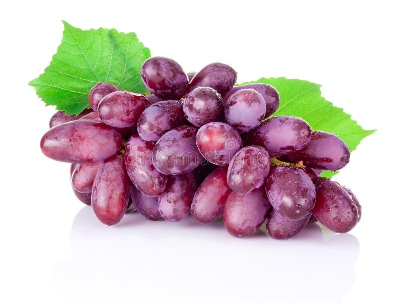 Verse natte rode die druiven op witte achtergrond worden geïsoleerd royalty-vrije stock fotografie