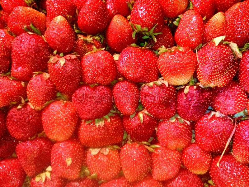 verse natutal aardbeien royalty-vrije stock fotografie