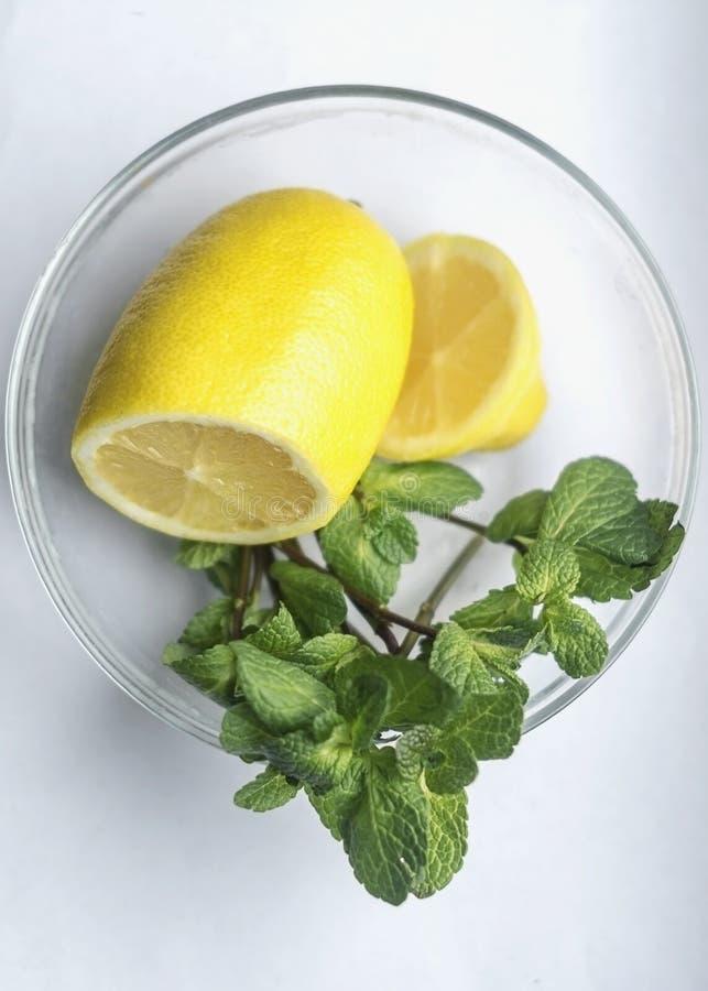 Verse natuurlijke kruiden groene melissa en citroen Organische aromatherapy ontspannings medische gezonde drank stock foto's
