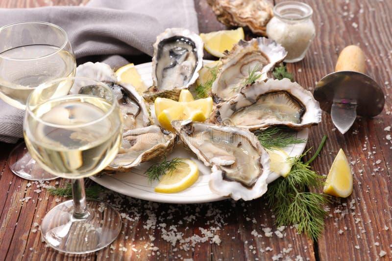 Verse oester stock afbeelding