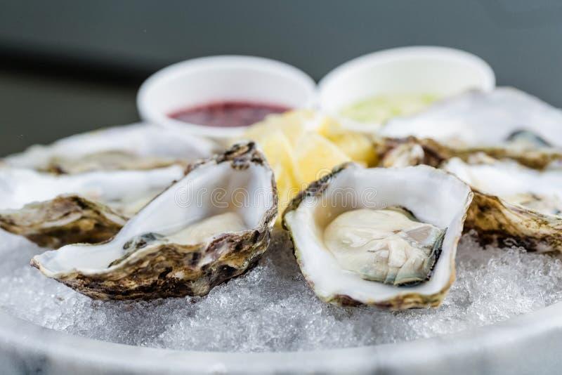 Verse oestersschotel met saus en citroen royalty-vrije stock fotografie