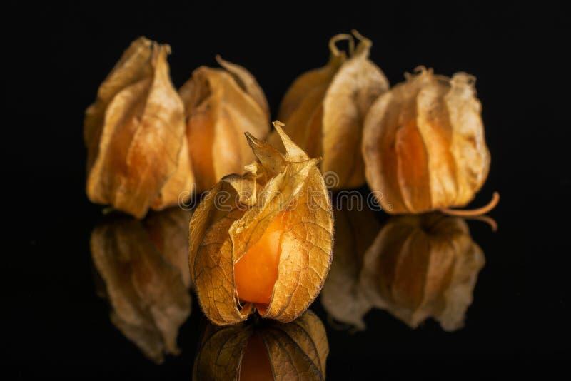 Verse oranje physalis die op zwart glas wordt geïsoleerd stock fotografie