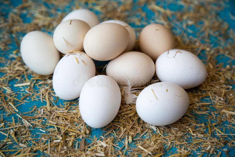 Verse organische eieren royalty-vrije stock afbeelding